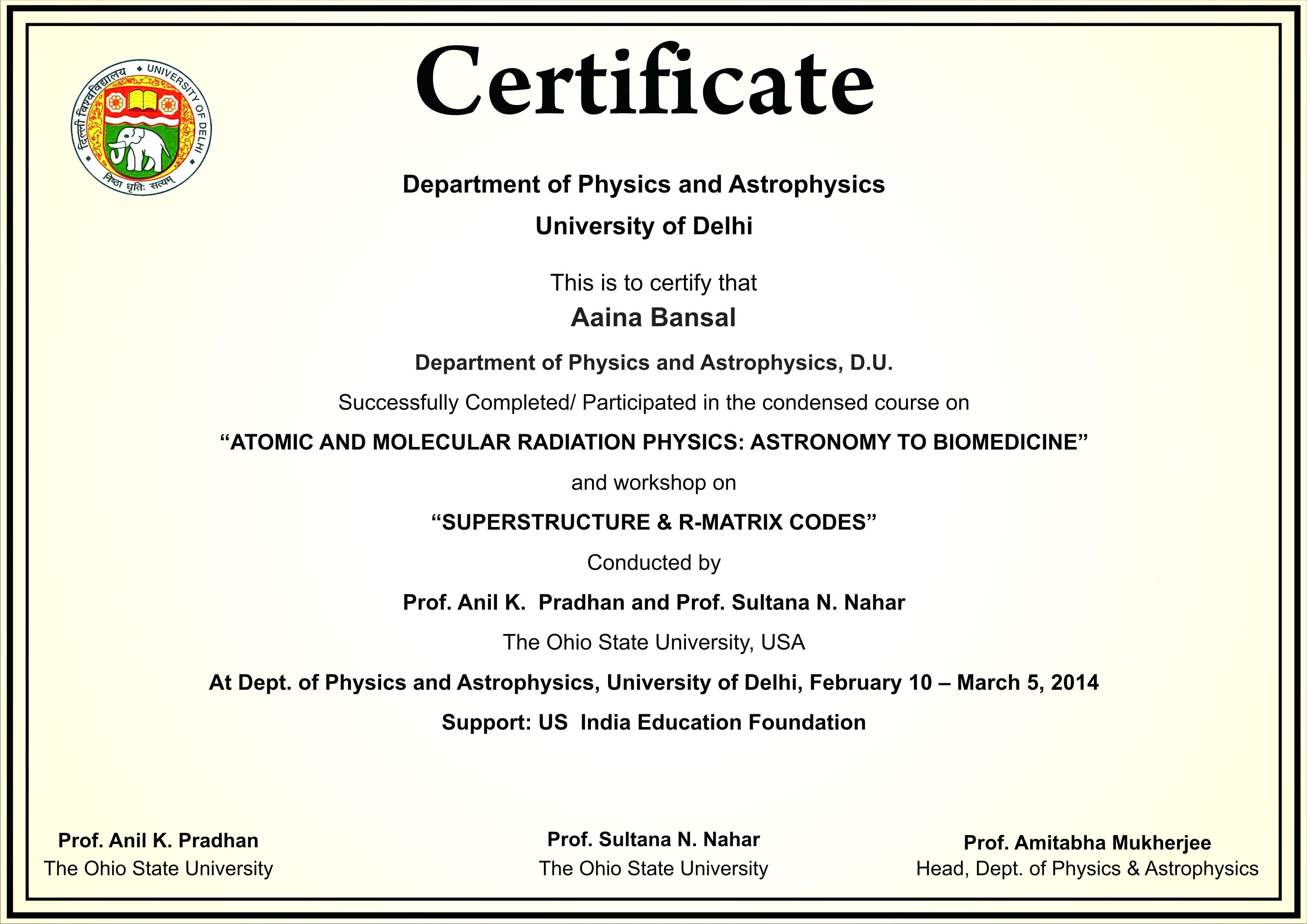 Example of Certificate of Participation in Workshop